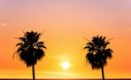 10 Ways To Spend Summer Like A Californian